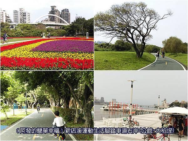 台北市01-新店溪運動生活腳踏車道右岸(公館-大稻埕)