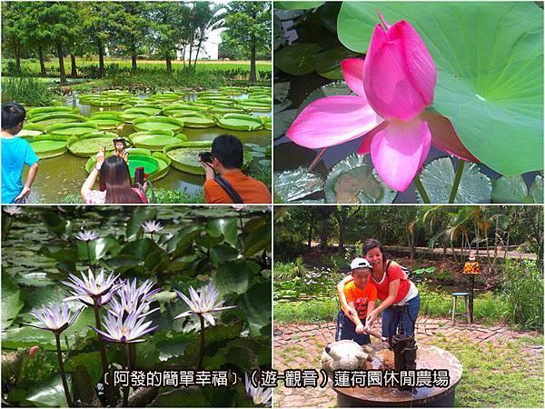 觀音-遊-02-蓮荷園休閒農場