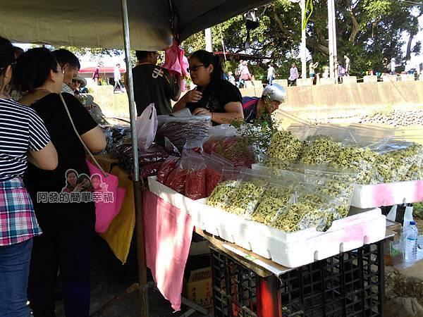 苗栗銅鑼杭菊季06-處處可見售有乾燥菊花的攤商