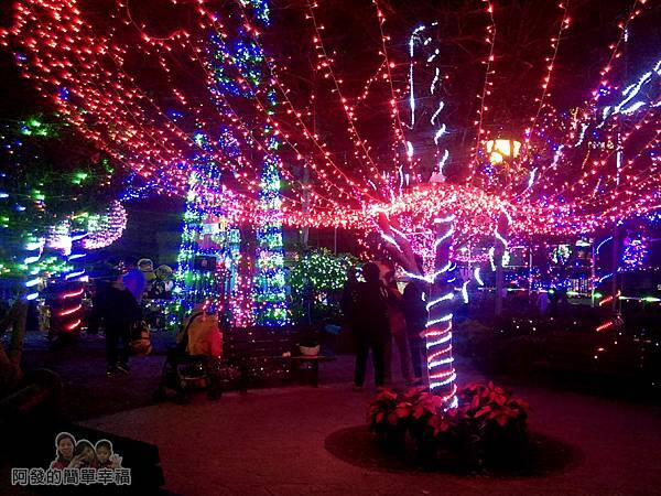 福興里聖誕公園04-公園中心的燈海