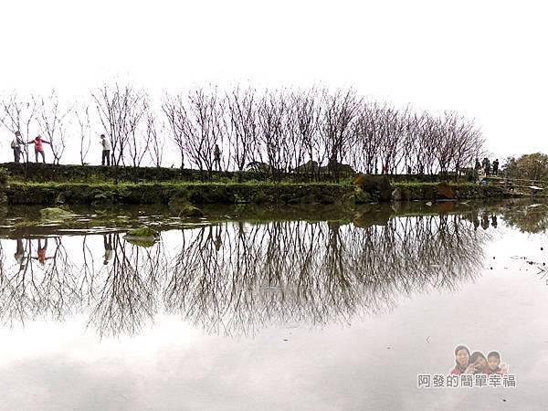 八煙聚落21-如國畫般的景色意境