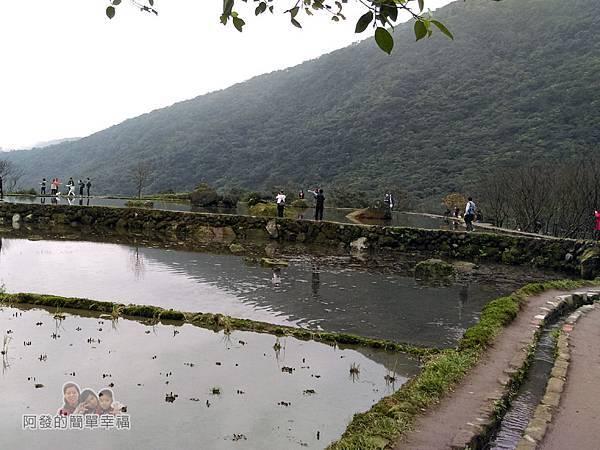 八煙聚落24-三層圳通往水中央的浮圳步道