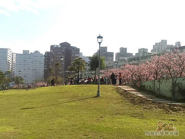 東湖樂活公園02-沿著〝內溝溪〞畔旁而建