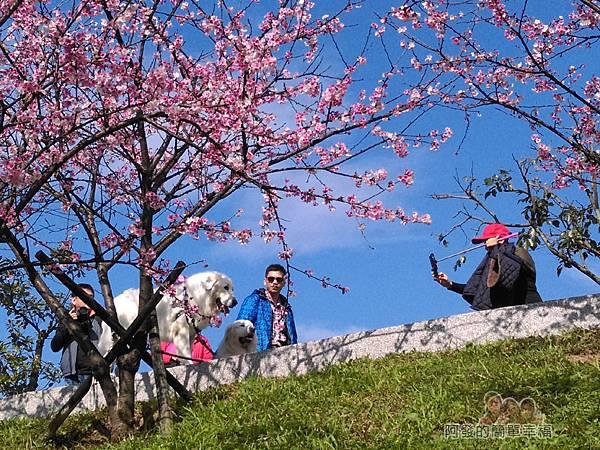 東湖樂活公園23-〝內溝溪〞畔步道朝上一景