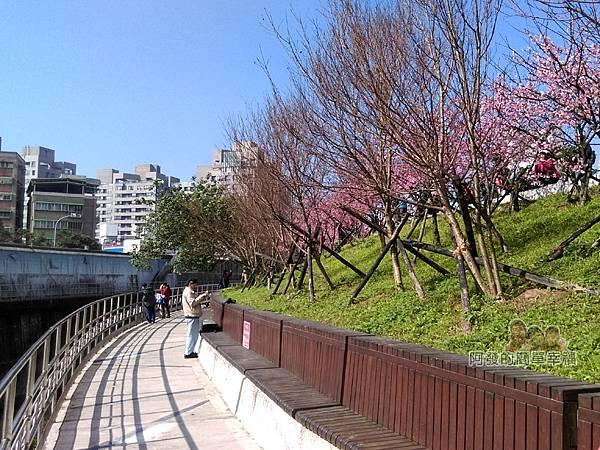 東湖樂活公園25-內溝溪畔步道