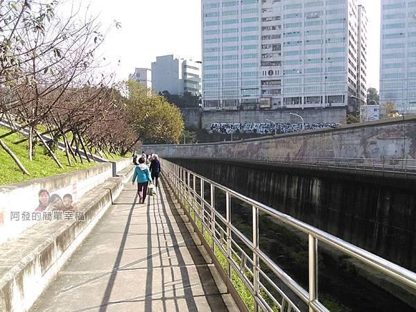 東湖樂活公園33-八重櫻步道