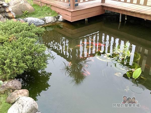 好客三星民宿26-景觀魚池