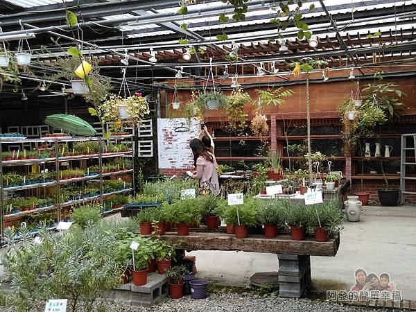 台北花卉村24-和香草說說話-提供各式香草植物、香草副產品