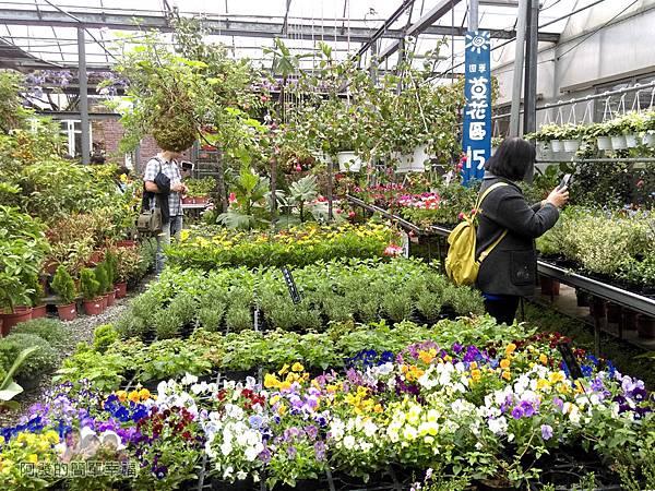 台北花卉村27-花庭園藝-悠閒挑選喜歡的植物
