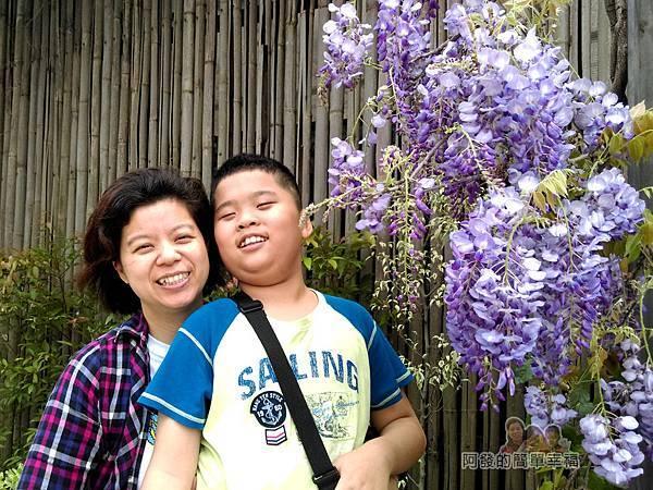 台北花卉村39-萬象廣場-屋簷下的紫藤花留影