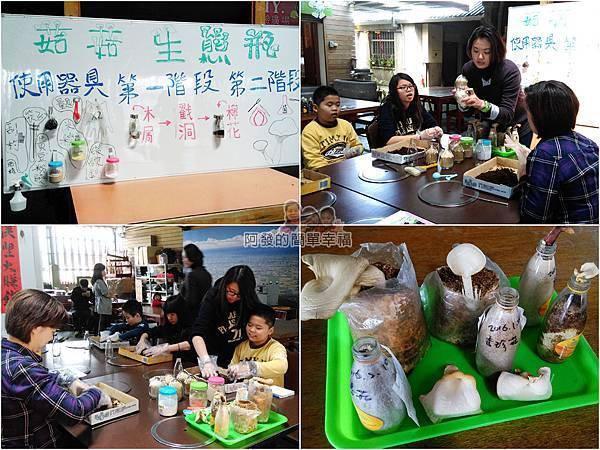 菇菇茶米館08-菇的生態瓶-種香菇過程