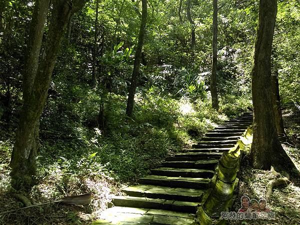 三峽白雞行脩宮22-再往上之登山步道
