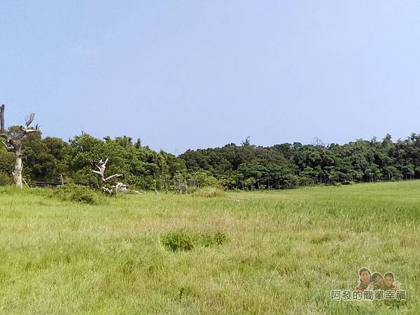 青青草原04-入口旁的青青草原(大草原)