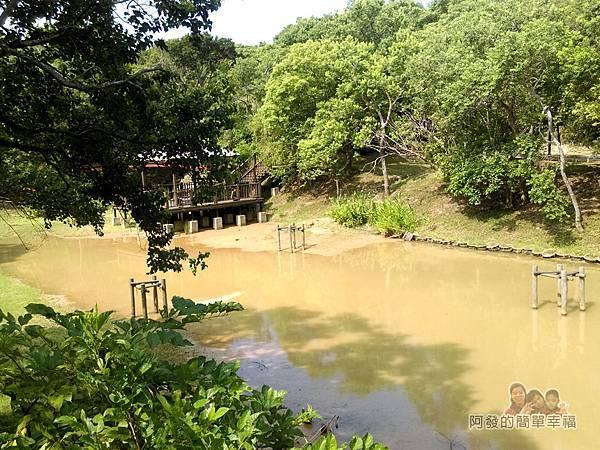 青青草原27-生態池(水水公園)