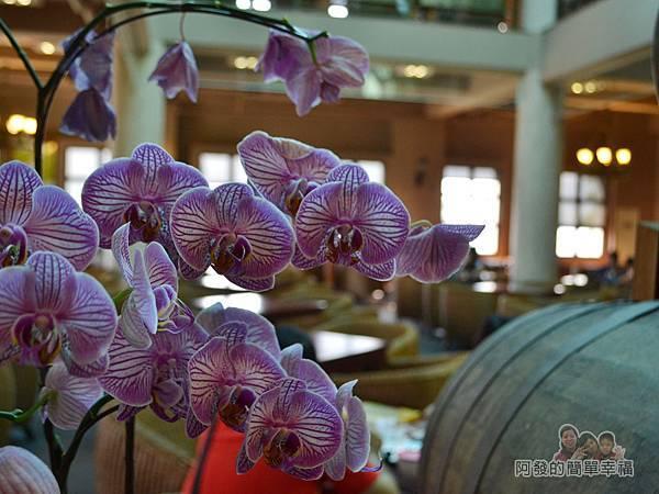 金車伯朗城堡咖啡館16-城堡1館-1樓用餐環境-栽植了不少蘭花