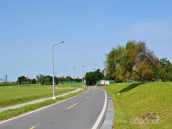 新店溪右岸26-華中橋至往光復橋路段-草皮