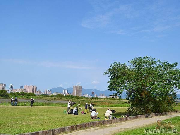 新店溪右岸35-華江雁鴨自然公園-守候的專業攝影師群II