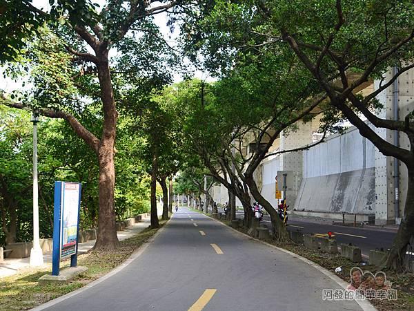 新店溪右岸36-龍山河濱公園路段