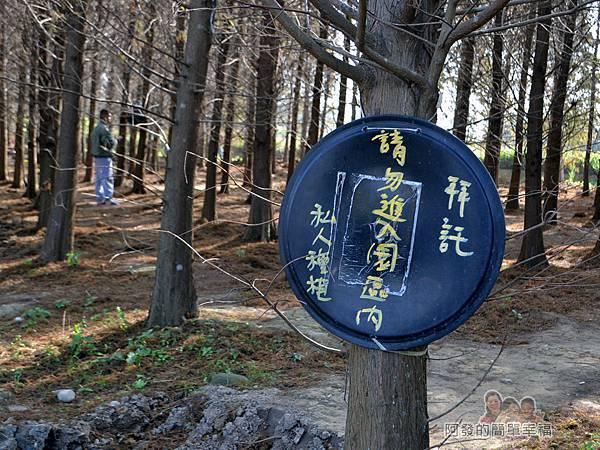 落羽松森林03-私人種植請勿進入