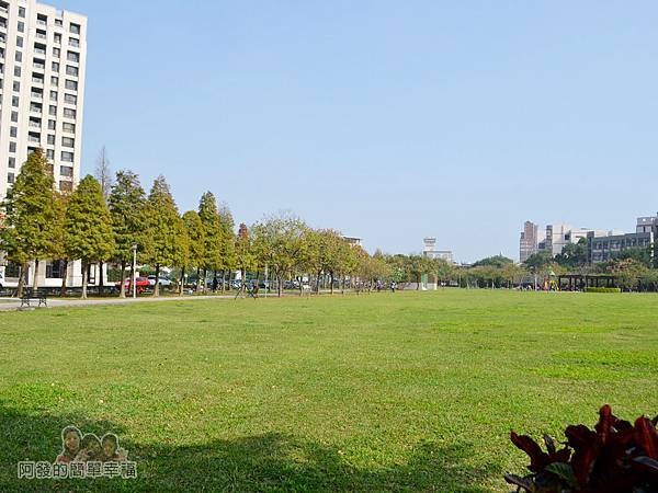 玉山公園16-公園的草皮有如鋪上一層舒服的綠色地毯