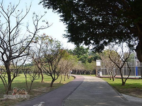 玉山公園17-公園的另一側步道為櫻花道