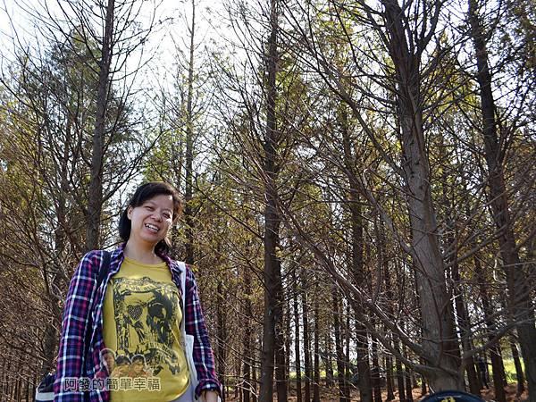 落羽松森林04-雖然不能進入但老婆還是很開心