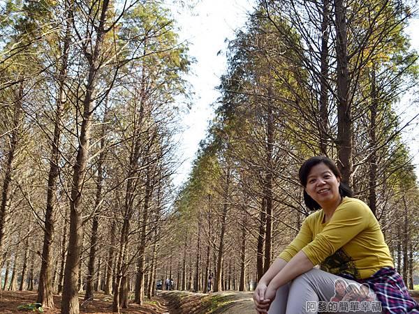 落羽松森林10-很開心的老婆
