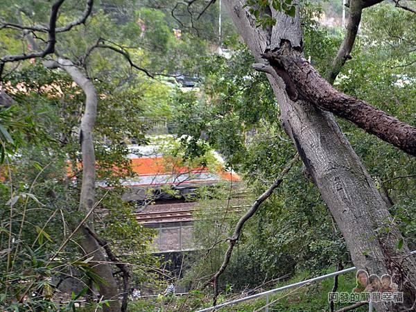 功維敘隧道09-看到火車與鐵軌了