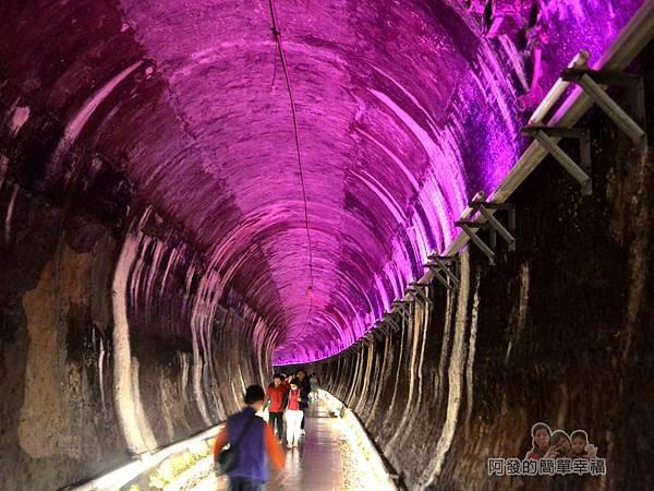 功維敘隧道21-紫色帶些神秘的夢幻感