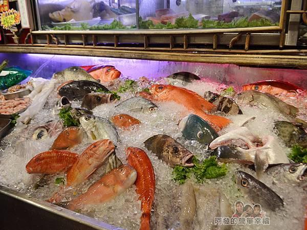 海釣族05-高價魚