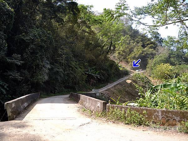 洗水坑李花祕境07-東山橋
