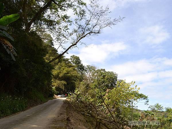 洗水坑李花祕境08-道路不寬山坡很陡