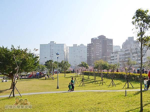 東湖樂活公園03-腹地算是中型的公園