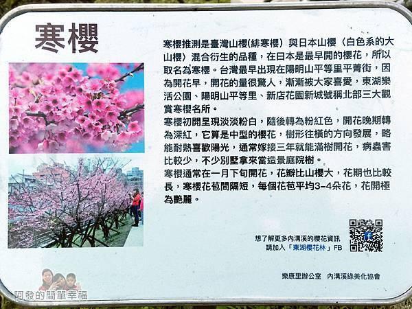 東湖樂活公園06-寒櫻介紹