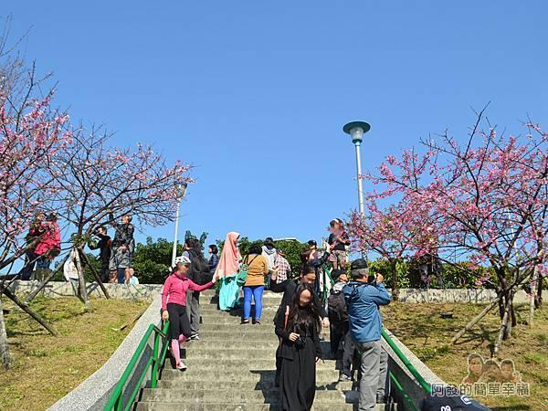 東湖樂活公園17-櫻花步道土坡的階梯