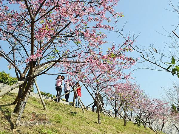 東湖樂活公園21-內溝溪畔步道朝上一景