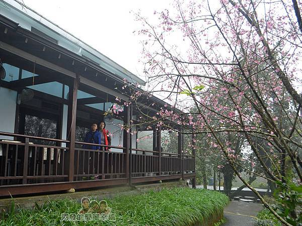 大尖山賞櫻13-珍饡玉膳餐廳側寫