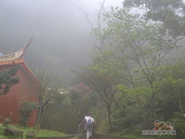 大尖山賞櫻21-登山步道