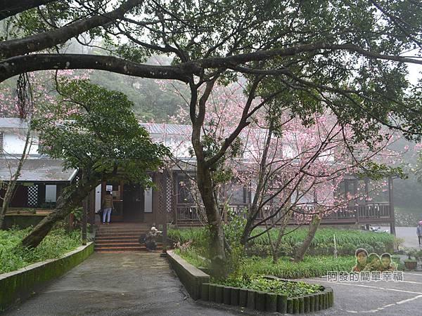 大尖山賞櫻25-珍饡玉膳餐廳入口一景