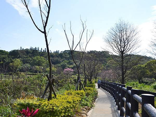 三生步道16-三生步道