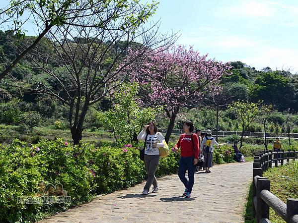 三生步道38-悠閒愜意的步道行