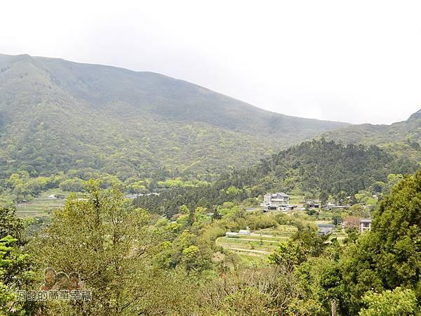 小溪頭柳杉林(黑森林)01-頂湖下的景色