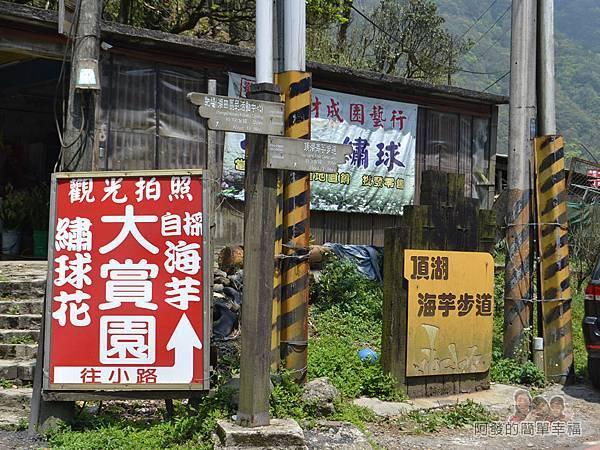 小溪頭柳杉林(黑森林)02-頂湖海芋步道入口