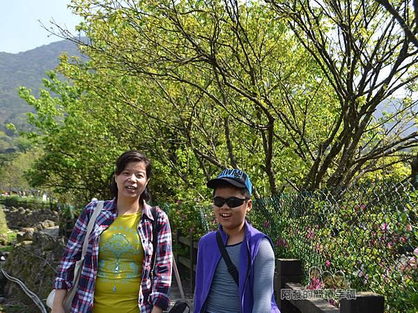 竹子湖海芋季08-下湖海芋步道上留影