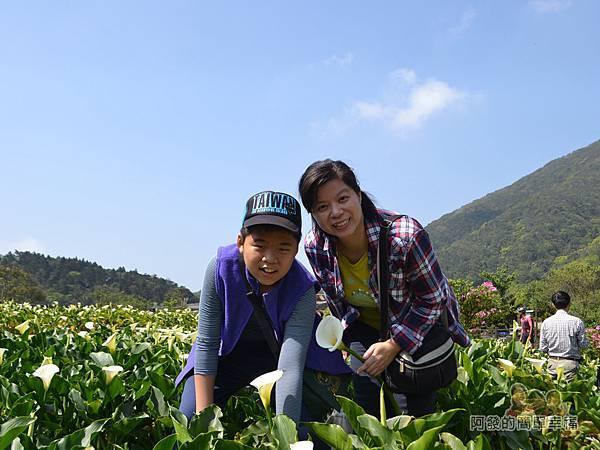 竹子湖海芋季18-開心的母子