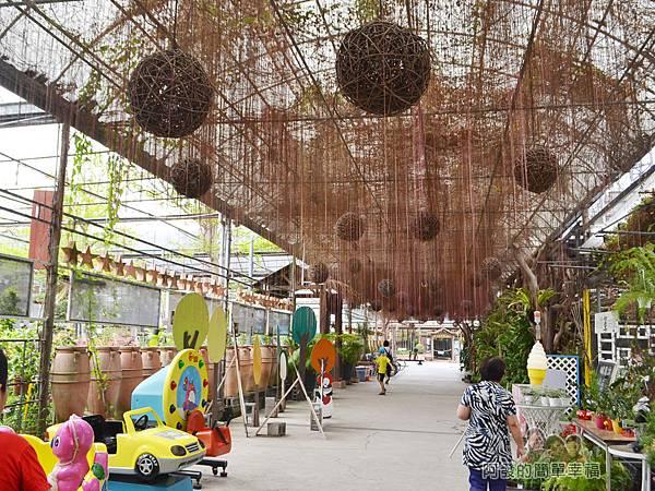 台北花卉村13-珠簾走廊-錦屏藤垂掛的氣生根妝點上藤編燈球