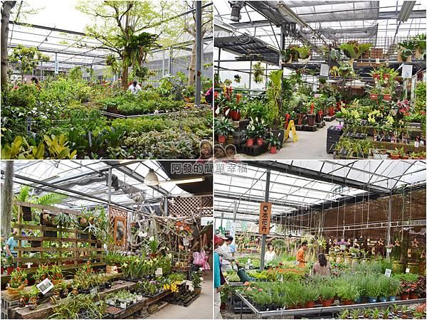 台北花卉村23-花庭園藝-組圖