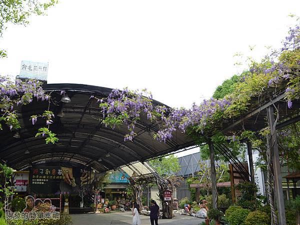 台北花卉村32-萬象廣場-屋簷下的紫藤花II
