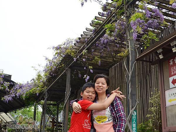 台北花卉村33-萬象廣場-屋簷下的紫藤花留影