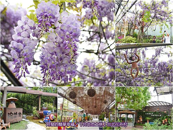 台北花卉村-all